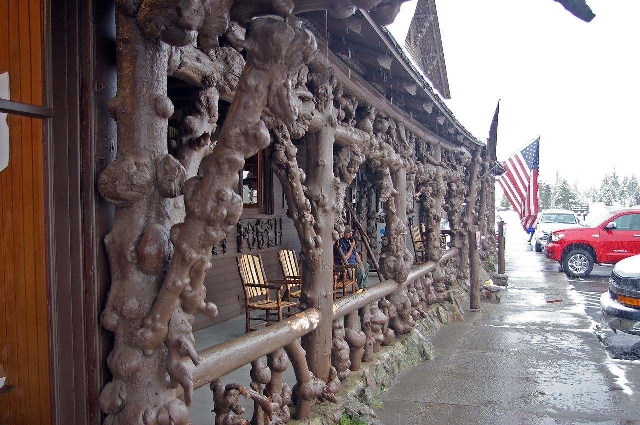Diseased Lodgepole Pine logs