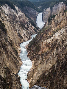 In Yellowstone's Grand Canyon