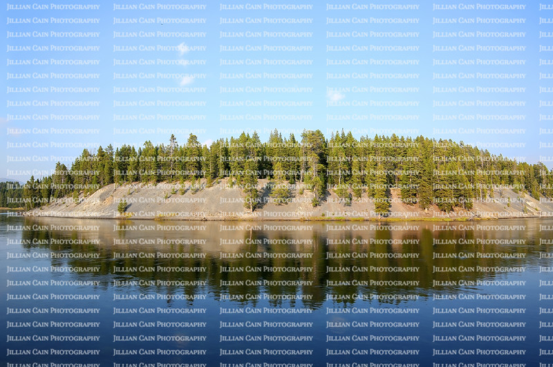 Beautiful mound with lodgepole pine trees reflecting in Yellowstone Lake at Yellowstone National Park in Wyoming, USA.