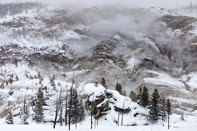 Roaring hill is beautiful in winter as the steam gushes forth from a multitude of fumaroles