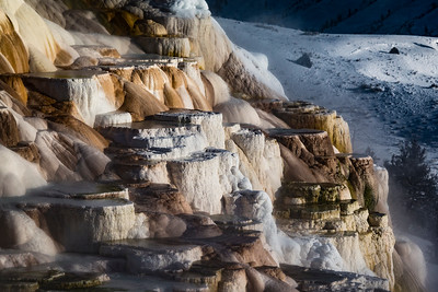 Travertine Terraces being formed at Mammoth Hot Springs