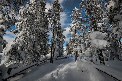 Rime Ice Pathway