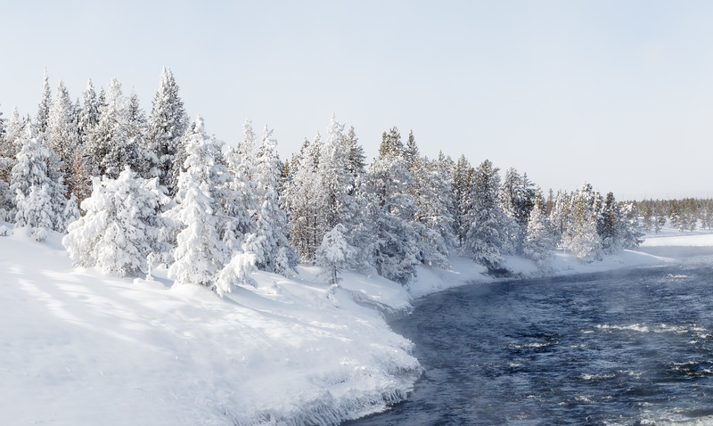 The Firehole River is warmed by the water from the Excelsior geyser - it is strange seeing rivers steaming in such cold conditions