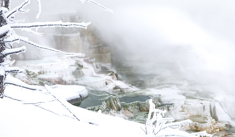 The upper terraces at Mammoth Hot Springs  - Canary Spring