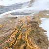 The colours of geothermal activity near the Firehole River