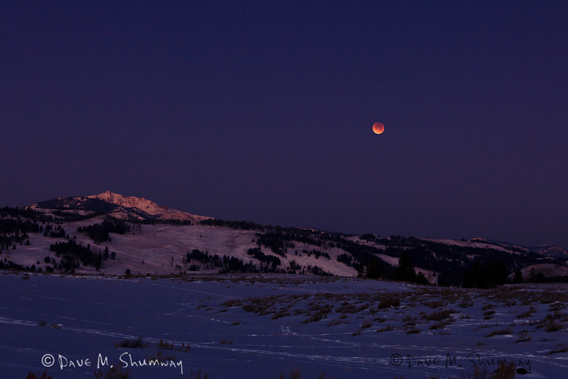 The moon turns blood red as it enters a full lunar eclipse, at the same time the sun rises casting its first light on Mount Everts in Yellowstone National Park. Captured with a Canon 5D II and 70-200/2.8L IS II in manual mode at ISO400, f/7.1, and 3.2  seconds. The camera was mounted on an Indur CT214 tripod and Acratech GP head. A cable release and LiveView, as mirror lock up, was used.