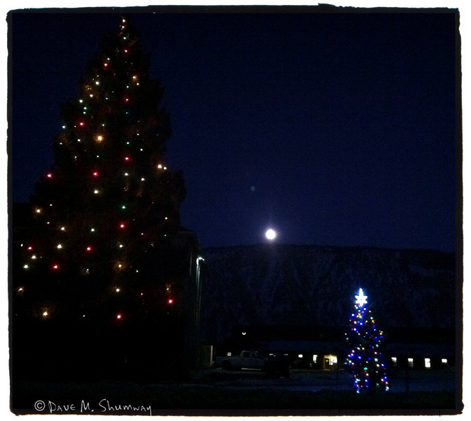 Mammoth, WY christmas trees and a rising full moon<br /> iPhone Snap