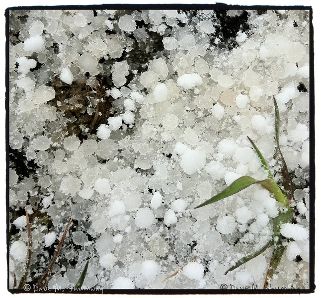 A mixture of corn snow and hail that pelted the few of us who stuck it out with the pair of Grizzly Bears at Steamboat Point. <br /> <br /> iPhone Snap