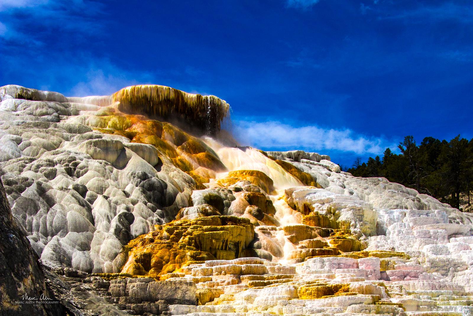 Mammoth Hot Springs, June 25, 2014.
