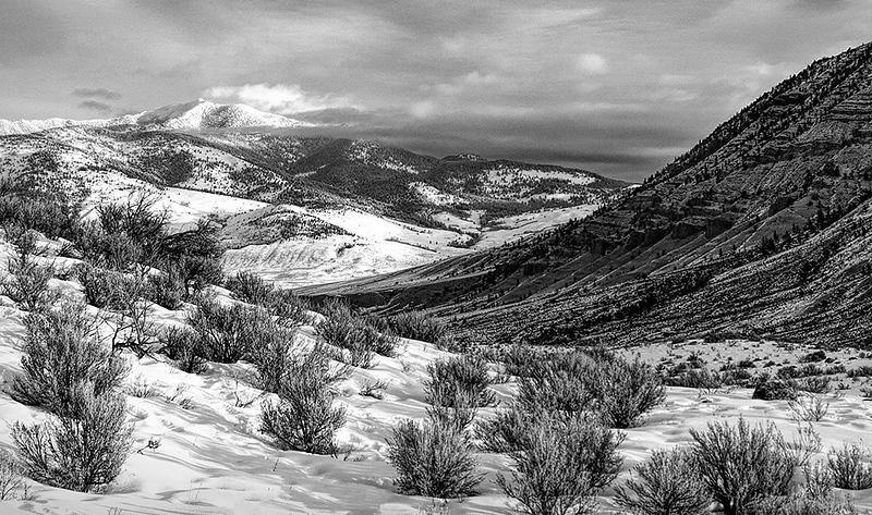 Winter Landscape, Lamar Valley