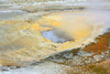~ Upper Geyser Basin ~