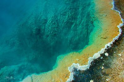 Black Pool at West Thumb Geyser Basin.  June 30, 2014.