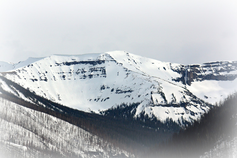 Snow In The Pass