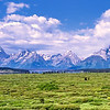 The Teton Range, Grand Teton National Park