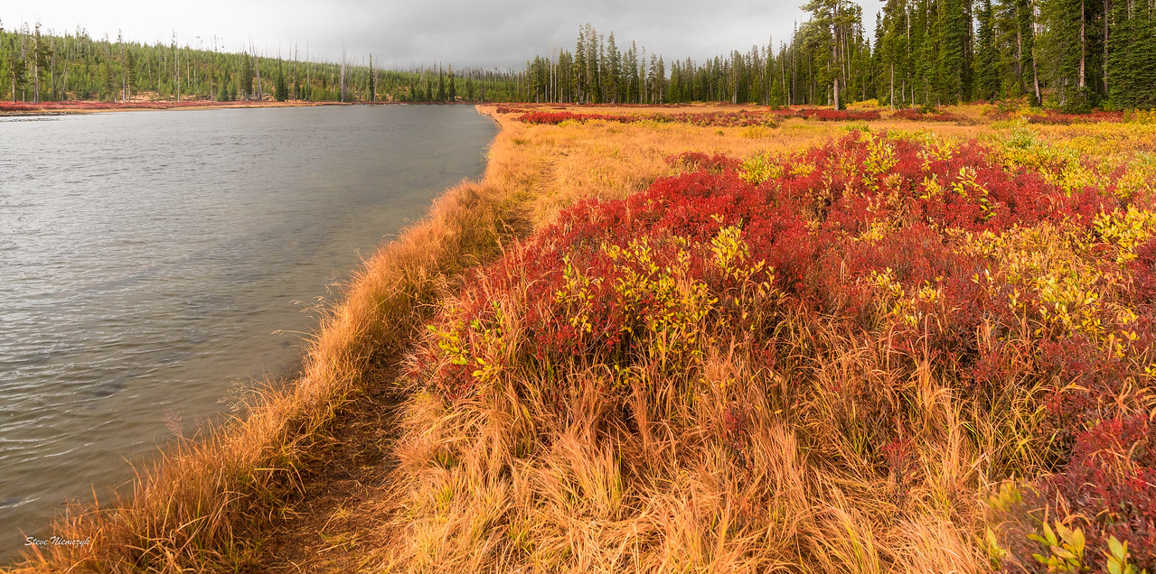 Yellowstone River just North of Yellowstone Lake