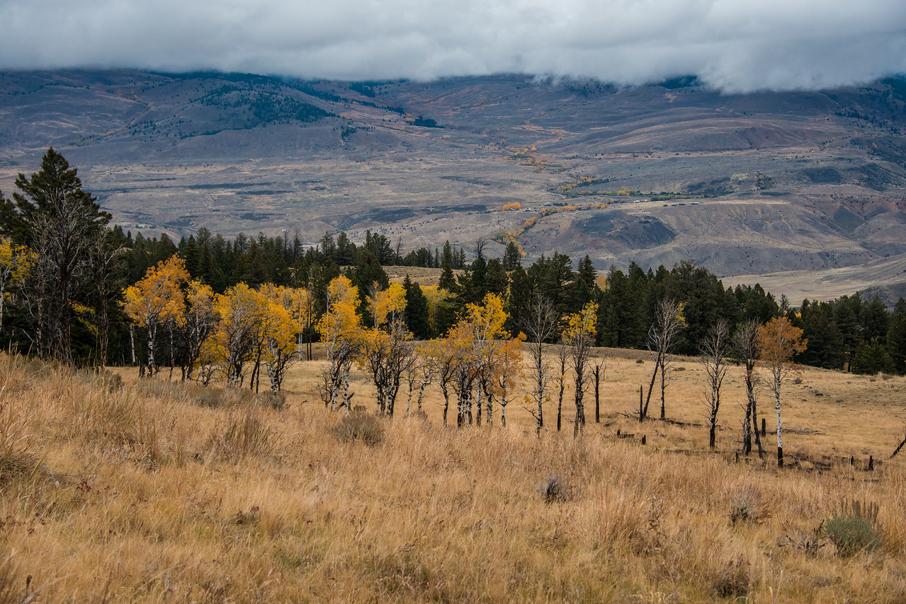 View from Beaver Ponds Trail near Mammoth Hot Springs