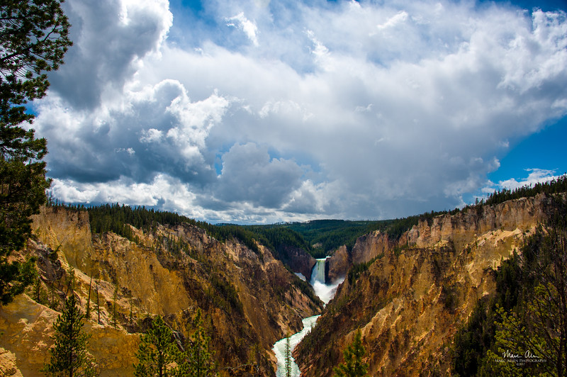 The Lower Falls and the Grand Canyon of Yellowstone, from Artist Point.  June 28, 2014.