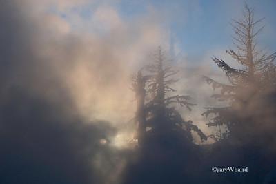 Mammoth Sunrise Mist