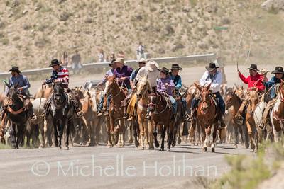 Gardiner, Montana - May 26, 2018- Cowboys drive horses through Gardiner for the Hells-a-roarin Horse Drive.