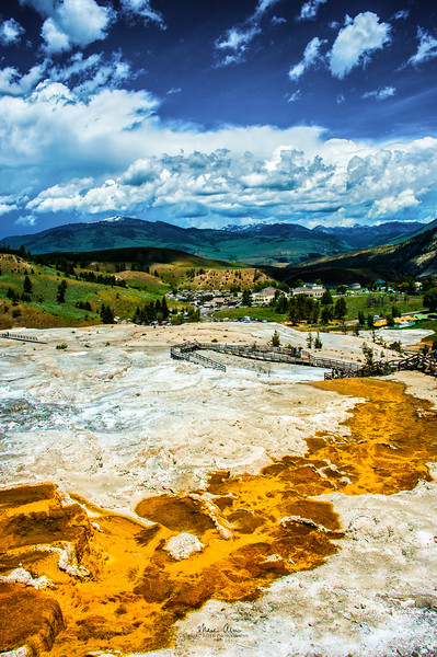 Mammoth Hot Springs, June 25, 2014.