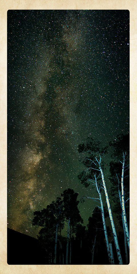 "'OVATION""   ___0184Mebt<br /> <br /> A Stand of Aspen cheer on the Milky Way<br /> This is a beautiful image as a 12x24 Metal Print with an egg-white border accenting the Milky Way and Aspen Trees.<br /> <br /> This unique image is fused directly onto a specially treated, rigid piece of Aluminum.<br /> More archival and lighter than a framed paper print, it arrives ready to hang.<br /> The Float-Mounted MetalPrint™ needs no frame and<br /> will appear to float 3/4"" from your wall.<br /> <br /> Archival paper prints are also available<br /> ------- Contact us for more information -------<br /> moreinfo@RobertHowellPhotography.com"
