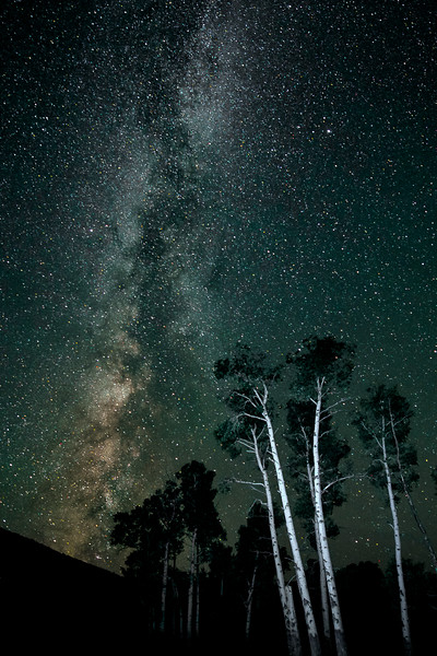 "' OVATION '  0184M<br /> <br /> Aspen Stand cheer on the Milky Way<br /> <br /> Trying to stay awake day and night...<br /> <br /> A Native American legend says that the Great Spirit offered all of the trees on Earth the chance to be given magical powers if they could stay awake for seven full days and nights. Only a few trees met the challenge. The magical powers they received were to remain green all year long—eternal color of the forest. The other trees had to lose their green-colored leaves in the fall and sleep during the winter.<br /> <br /> <br /> This unique image is fused directly onto a specially treated, rigid piece of Aluminum.<br /> More archival and lighter than a framed paper print, it arrives ready to hang.<br /> The Float-Mounted MetalPrint™ needs no frame and<br /> will appear to float 3/4"" from your wall.<br /> <br /> Archival paper prints are also available<br /> ------- Contact us for more information -------<br /> moreinfo@RobertHowellPhotography.com"