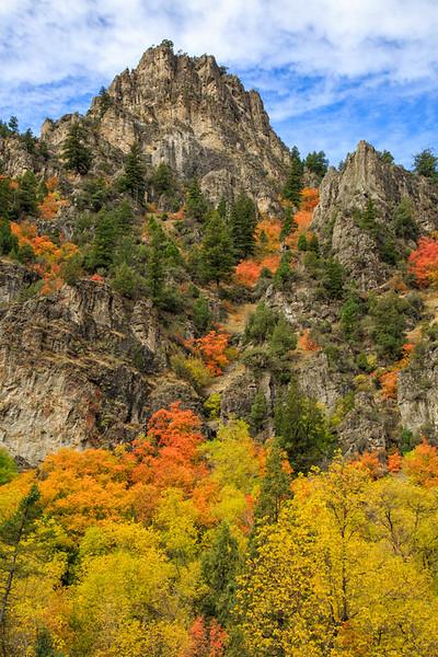 Northern Utah fall colors