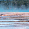 People standing in the mist above Grand Prismatic Spring