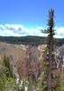 Yellowstone 2