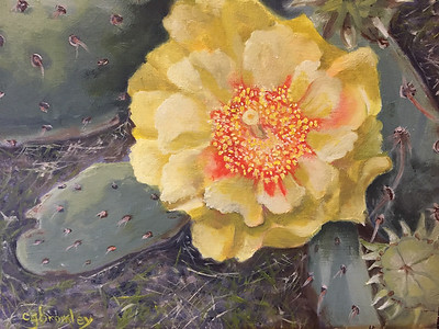 """Cactus Flower"" (oil) by Crista Bromley"