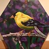 """Goldfinch"" (acrylic) by Vasundhara Tolia"