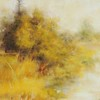 """Yellow Has It's Place"" (soft pastel) by Sharyn Lightfoot"