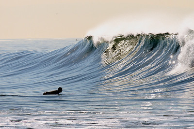 surfing venice