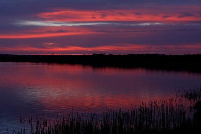 Tofte sø i aftenrøde