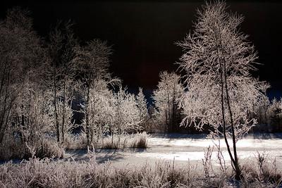 Kirstins sø, Rold Skov