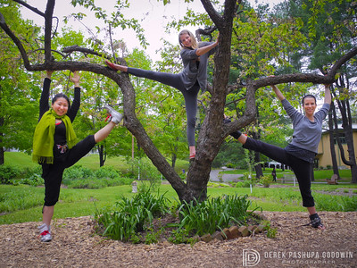 Jivamukti Yoga 2011 teacher trainees by beautiful tree at Omega Campus in Rhinebeck, NY.