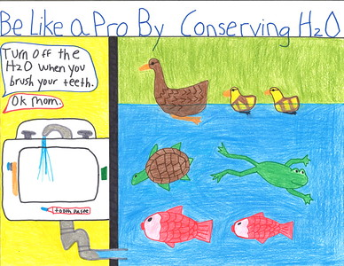 Cameron Salyers, in the 5-6 grade division, from Pioneer Elementary in Davis, earned an honorable mention.