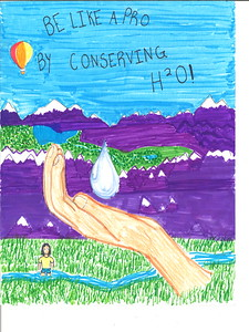 Amanda Richman, in the 5-6 grade division, from Patwin Elementary in Davis, earned a first place award.