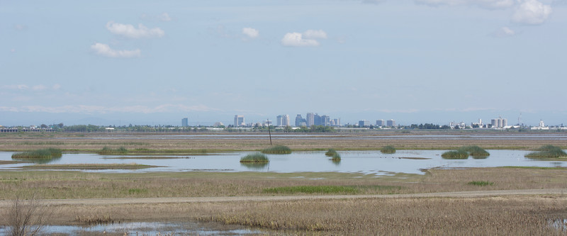 Sacramento viewed from Yolo Bypass