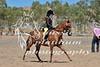 York Horsemans 20-2-616