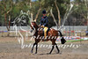 York Horsemans 20-2-626