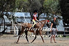 York Horsemans 20-2-609