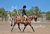 York Horsemans 20-2-624