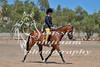 York Horsemans 20-2-623
