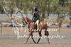 York Horsemans 20-2-614