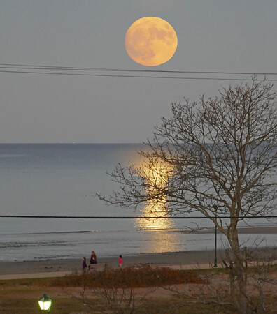 Super Moon November 13, 2016, by Fred Merriam