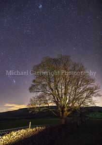 Stars Over Carperby