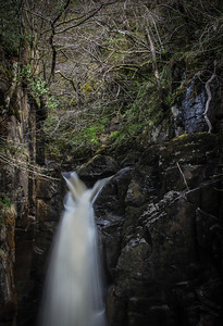 Hollybush Spout