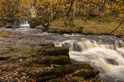 Swaledale In Autumn