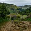 Swaledale Barns & Meadows